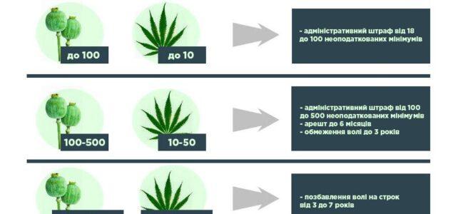 Відповідальність за незаконний посів вирощування маку та коноплі